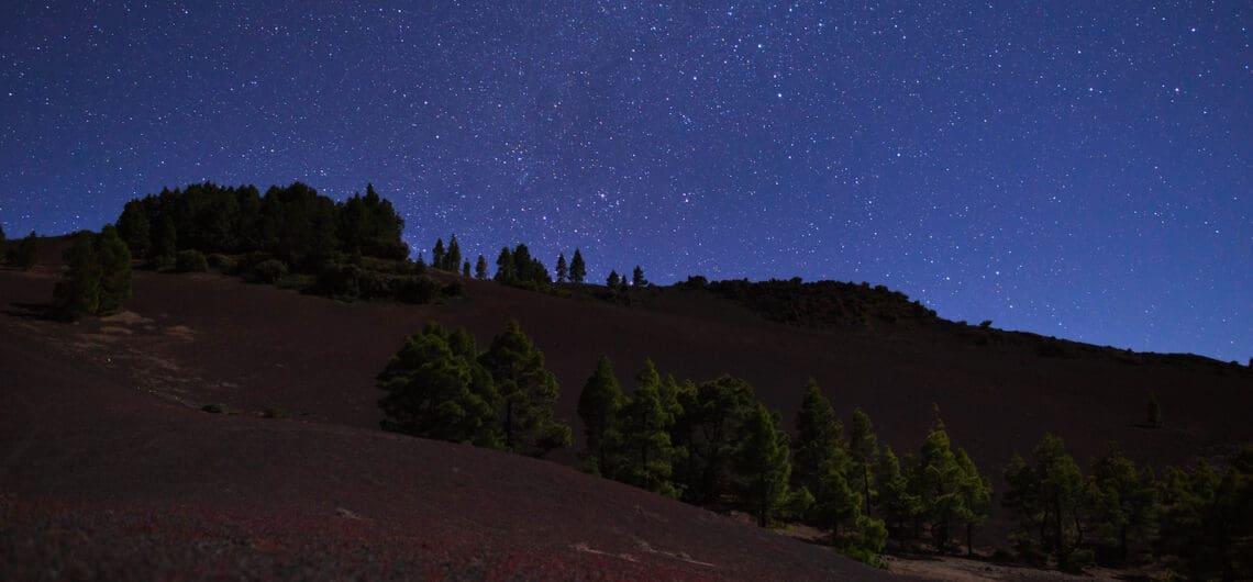 Ecoturismo en La Palma. Floración del Llano del Jable con cielo estrellado